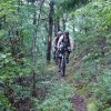 Mountain Bikers on Shenandoah Mountain Trail